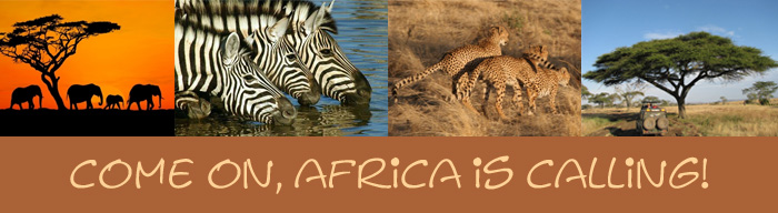Come on, Africa is Calling!